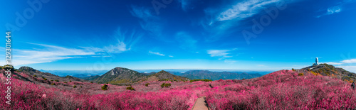 Foto auf AluDibond Hochrote Biseulsan National Recreation Forest The best Image of landscape Mountain flower and autumn in South Korea.
