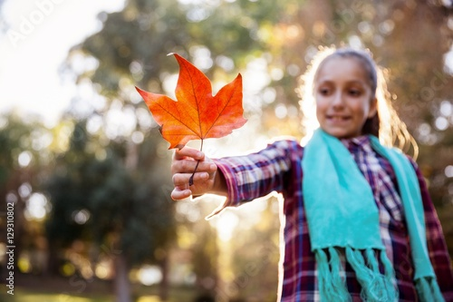 Poster  Smiling girl holding autumn leaf at park