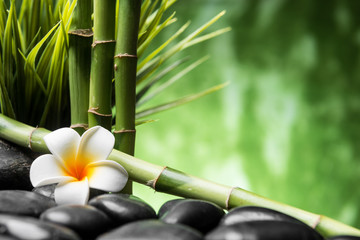 Obraz na Szkle Do sypialni frangipani and bamboo on the zen basalt stones