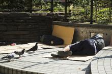 Japanese Vagabond People Sleeping On Floor In Public Park In Mor