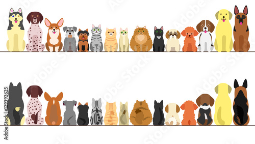 Photo  large and small dogs and cats banner set, front view and rear view