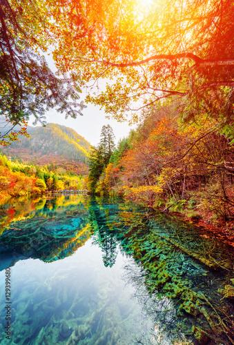 Spoed Fotobehang Meloen The Five Flower Lake among fall woods, Jiuzhaigou nature reserve