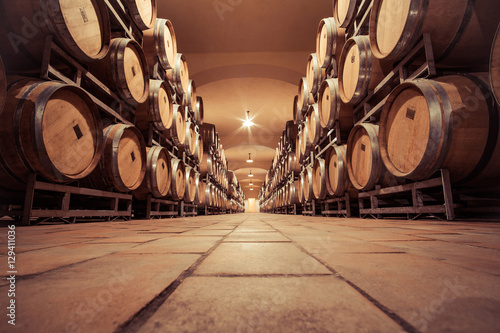 Wine oak barrell in cellar Canvas Print