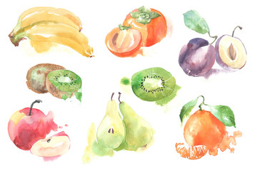 Set of fruits in watercolor style. Isolated.