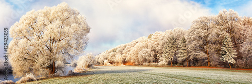 Fotobehang Wit Winter Landscape Panorama, Germany