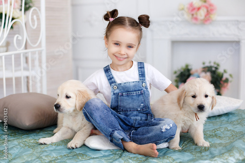 Fototapety, obrazy: Little girl,brunette hair,tied with pink bands into two tails,dressed in a white t-shirt and blue denim overalls is playing at home,sitting alone on the bed with two puppies breed Golden Retriever