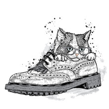 Cute Kitten In A Beautiful Shoe. Vector Illustration For A Card Or Poster. Print On Clothes. Cute Cat.