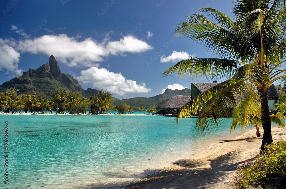Fototapeta Serene Bora Bora beach scene, a South Pacific island with palm trees, green ocean and mountains background