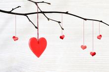 Red Heart Hanging On A Tree Branch
