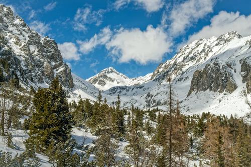 Photo  Winter in High Tatras Mountains