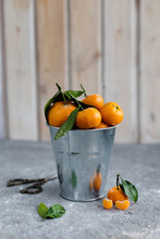 Orange Tangerines In The Bucke...