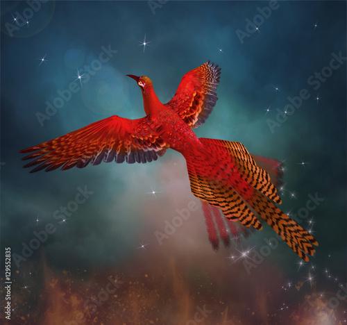 Phoenix flies through the sky  Fototapete