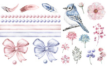 Set Cute Watercolor Elements Of Flower. Pink And Blue Bow, Bead. Kids Collection Flowers, Leaves, Branches, Illustration Isolated, Bird - Blue Jay, Feathers, Berry, Me-nots, Herbs, Rim, Border.