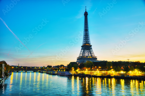 Garden Poster Paris Cityscape with the Eiffel tower