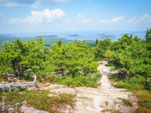 Fotografie, Obraz  Acadia National Park