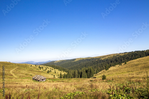 Poster Khaki Panorama of Carpathian mountains in summer sunny day. House in m
