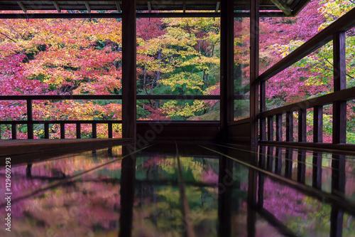 Printed kitchen splashbacks Kyoto 秋の瑠璃光院
