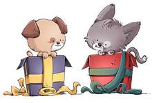 Regalo De Gato Y Perro