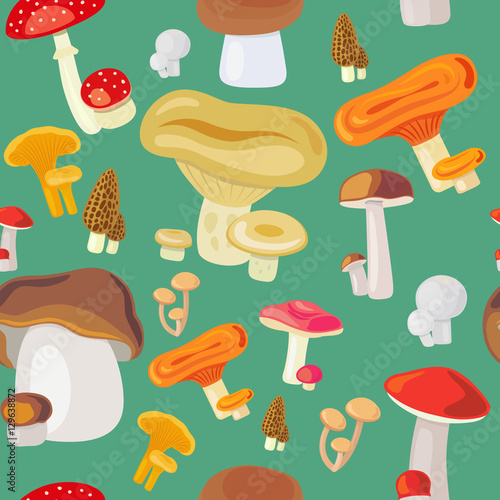 Deurstickers Magische wereld Vector illustration mushroom seamless pattern on green background