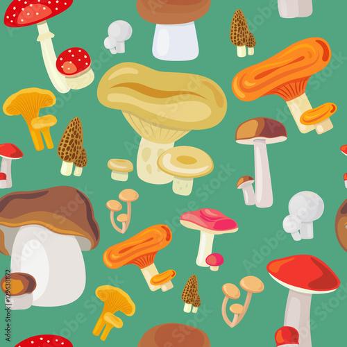 Foto auf Gartenposter Die magische Welt Vector illustration mushroom seamless pattern on green background