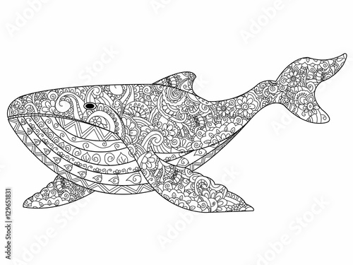 Whale coloring vector for adults Poster Mural XXL