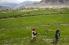 Women Farmers Carry Irrigation Tools Like Small Spades Used To Channel The Precious Water To Their Fields, Ladakh