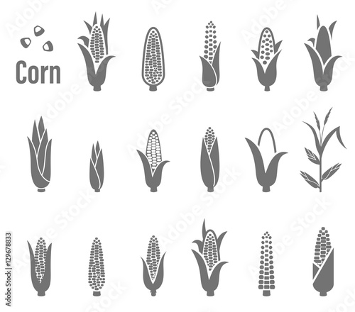 Fotografia Corn icons. Vector illustration.