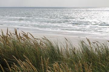 Fototapeta Blick von der Düne auf das Meer
