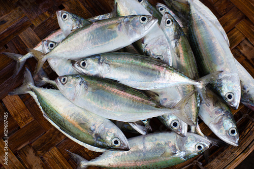 Fresh raw fish in market. Seafood background. Canvas Print