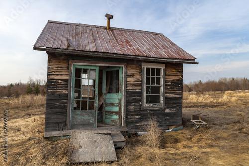 Fotografie, Tablou neglected cabin in a farmer field