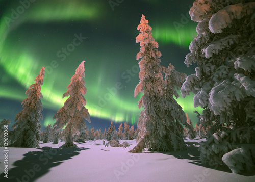 Photo sur Toile Aurore polaire Northern Lights - Aurora borealis over snow-covered forest. Beautiful picture of massive multicoloured green vibrant Aurora Borealis, Aurora Polaris, also know as Northern Lights in the night sky
