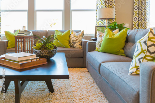 Beautiful Living Area with Coffee Table and Couch of New Home. Canvas-taulu