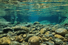 Rocks Underwater On Riverbed W...
