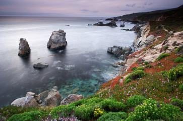 Fototapeta Morze Garrapata Shoreline (H)