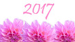 happy new year 2017 pink flower