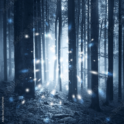 Magic fantasy firefly lights in the fairy tale foggy forest.