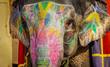 canvas print picture Geschmueckter Elefant in Indien
