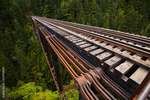 Fotografering Railroad bridge