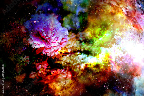 abstract multicolor flower motive collage in space. Carnation flower. - 129768886