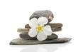 Spa stones and flower, isolated on white background.