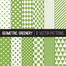 Green Geometric Vector Pattern...