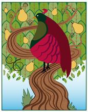 Partridge / A Partridge In A P...