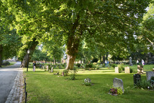 Sweden, Sodermanland, Stockholm, Green Grass And Trees In Cemetery