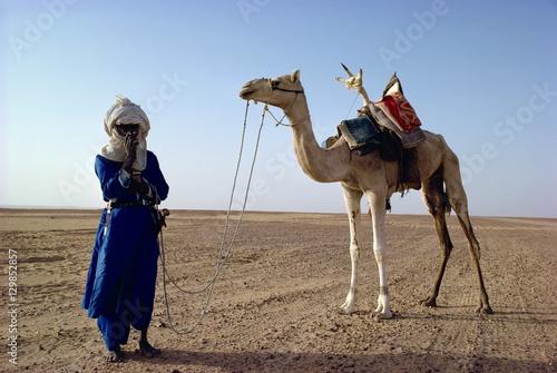 Papiers peints Statue Tuareg tribesman and camel, Niger, Africa