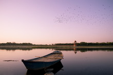 A Flock Of Birds Flying Over An Old Boat On The Yamuna River At Sunset In Agra, Uttar Pradesh