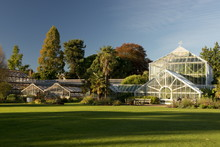 The Glasshouses On An Autumn Day In The Cambridge Botanic Garden, Cambridge, Cambridgeshire