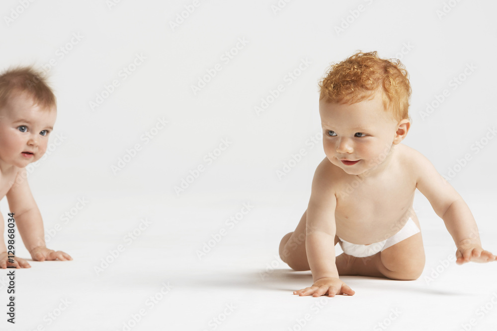 Fototapety, obrazy: Cute babies crawling isolated on white background