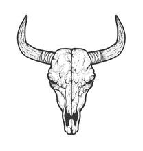 Bull Skull Native Americans Tr...