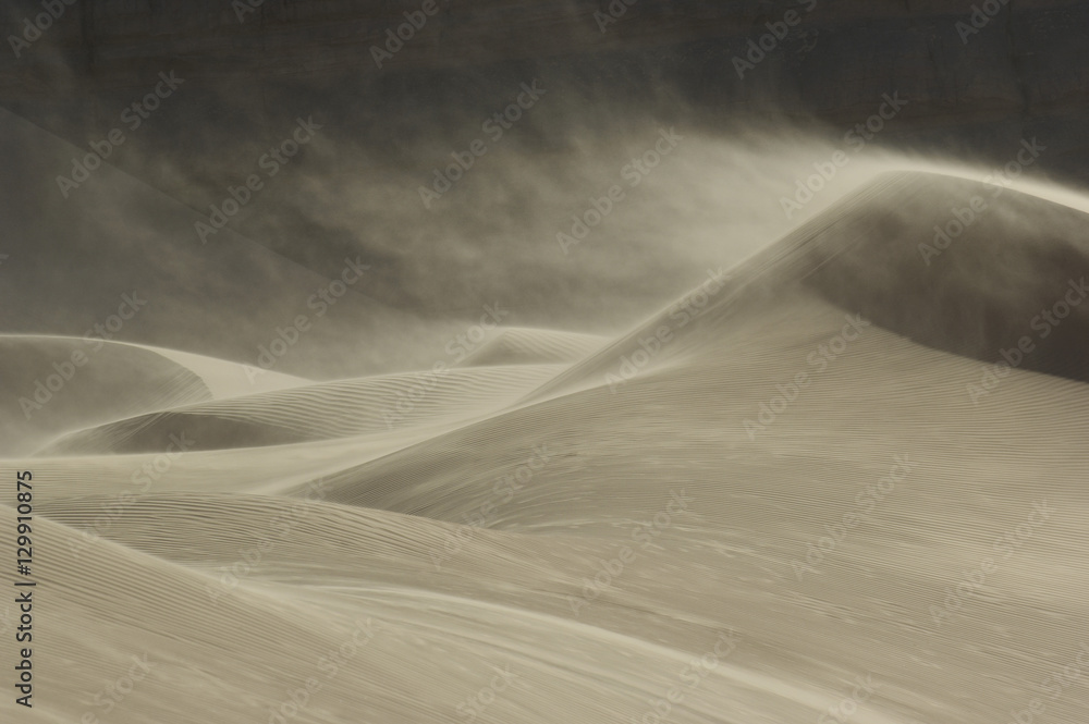 Fototapeta Sand blowing over sand dune in wind