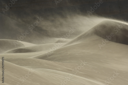 Obraz Sand blowing over sand dune in wind - fototapety do salonu